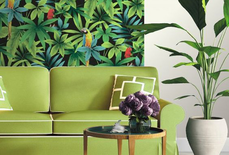 urban jungle ambiance tropicale mes petites puces. Black Bedroom Furniture Sets. Home Design Ideas